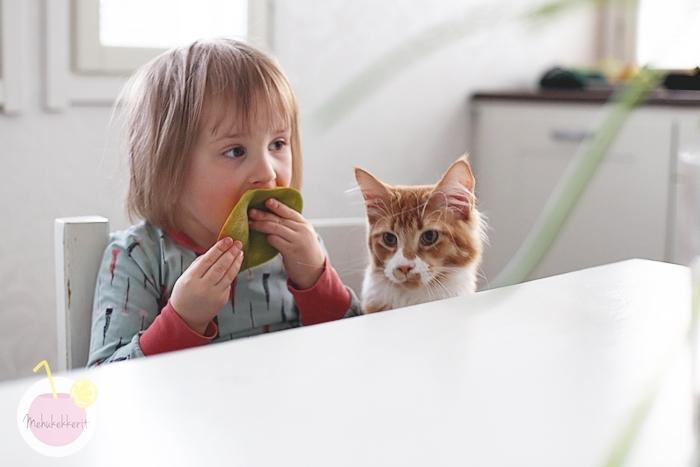 Kissanpentu lapsiperheeseen